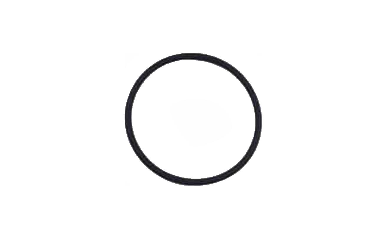 Gasdetektion Dichtheitsmessung ISM O-Ring